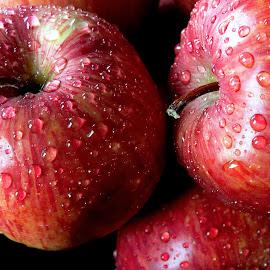 fresh again by Asif Bora - Food & Drink Fruits & Vegetables (  )