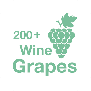 200+ Wine Grapes For PC / Windows 7/8/10 / Mac – Free Download