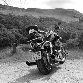 peak district on the thunderbird by Tony Grainger - Transportation Motorcycles