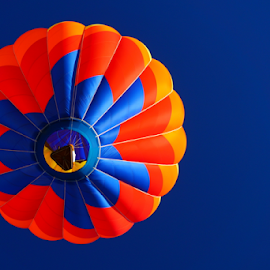 iSOAR 5  by Beth Collins - Transportation Other ( oregon, balloon festival, color, albany, colorful, summer, fun, hot air balloons, albany art and air festival,  )