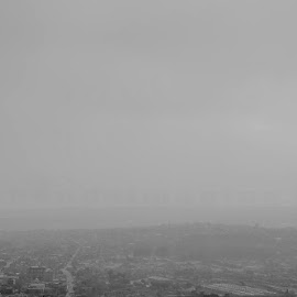 foggy Jozi by Barbara Springer - City,  Street & Park  Skylines ( black and white, grey, cityscape, africa, big city, capital )