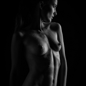 Sophie's Body by Reto Heiz - Nudes & Boudoir Artistic Nude ( nude, black and white, nudeart, female nude, lowkey,  )