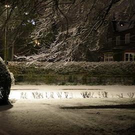Snowfall at Midnight by Andrej D - City,  Street & Park  Street Scenes