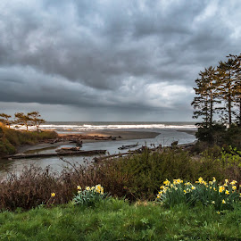 by Kathy Suttles - Landscapes Cloud Formations ( washington, suttleimpressions, cloudcover, olympia national park, kalaloch, coastline, springtime )