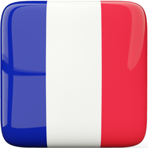 Download French Grammar For PC Windows and Mac