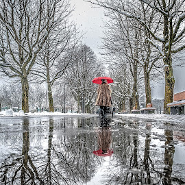 Red Humbrella by Jesus Giraldo - City,  Street & Park  Street Scenes ( water, humbrella, reflection, winter, red, woman, street, trees, walk, paddle )