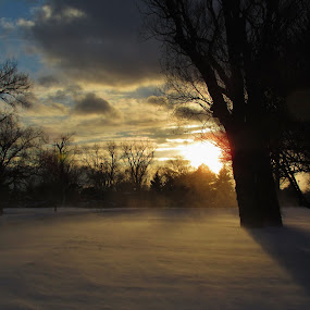 Squalls Of February  by Howard Sharper - City,  Street & Park  City Parks ( winter, park, sunset, landscape photography, snowing )
