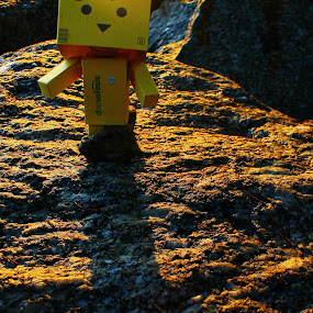Bring Me Together by Adi Suda - Novices Only Objects & Still Life ( pwcstilllife #danbo #stilllife #malaysia #perak )