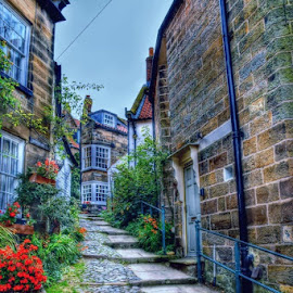 robin hoods bay by Betty Taylor - City,  Street & Park  Street Scenes ( street, travel locations, pathways, building, robin hoods bay )