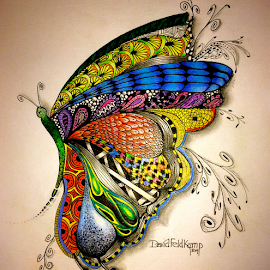 ZenFly by Dave Feldkamp - Drawing All Drawing ( pencil, colored pencil, butterfly, butterflies, fly, zentangles, colored pencils, drawing, pencils, ink )