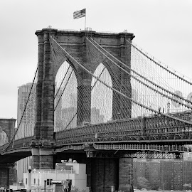 Brooklyn Bridge to Manhattan by Finley Delouche - Buildings & Architecture Bridges & Suspended Structures ( brooklyn bridge, historic bridge, lower manhattan, tourists, travel location, east river, travel, new york, new york city, travel photography, historic )