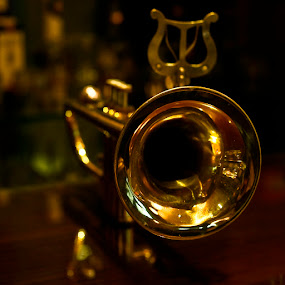 Brass by Tigi Borg - Artistic Objects Musical Instruments ( novalja, interior, indoor, color, art, valis, nusic, 2012, trompet, lighthunters )