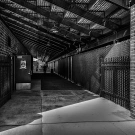 Into the shadows (b&w) by John Hoey - City,  Street & Park  Street Scenes ( pedestrain, b&w, park, street, black & white, massachusetts, people, shadows, city, monochromatic, new england, ma, tunnel )