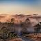 Foggy Road-23-4-2016-Edit.jpg