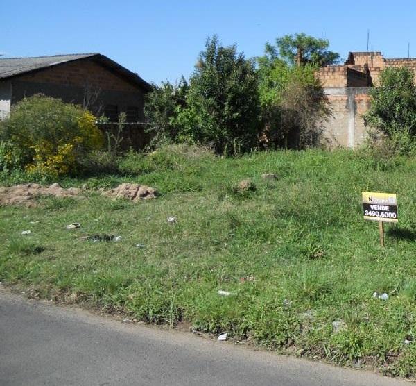 Terreno, Bom Sucesso, Gravataí (TE0010) - Foto 2