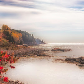 Fall Fog In Distance by Sue Matsunaga - Landscapes Weather