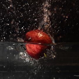 Applesplash by Alessandra Antonini - Food & Drink Fruits & Vegetables ( red, apple, water, splash,  )