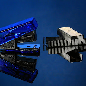 Blue  Stapler by Hylas Kessler - Artistic Objects Business Objects