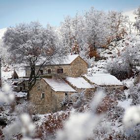 by Nediljko Prološčić - City,  Street & Park  Neighborhoods ( winter, landscape )