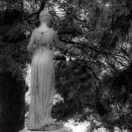by Kevin Callahan - City,  Street & Park  Cemeteries