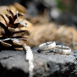 Rings by Klaudia Klu - Wedding Details ( shine, wedding rings, sun )