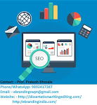 With Our Expert SMO Services in Indore, You Can Easily Gain Popularity