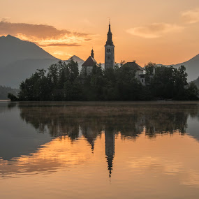 Peaceful Sunrise at Lake Bled by Aleš Krivec - Buildings & Architecture Places of Worship ( water, reflection, europe, church, beautiful, white, forest, lake, architecture, spring, reflecting, island, mountains, tree, nature, fog, bled, castle, mist )