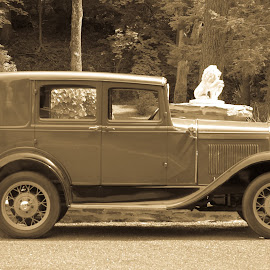 by Forrest Covin - Transportation Automobiles