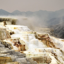 Mammoth Hot Springs by Gosia Lukowiak - Landscapes Travel (  )
