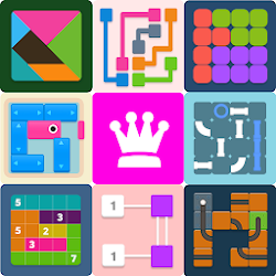 Puzzledom  classic puzzles all in one