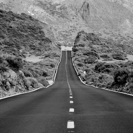 Road by Mike Tricker - Black & White Landscapes (  )