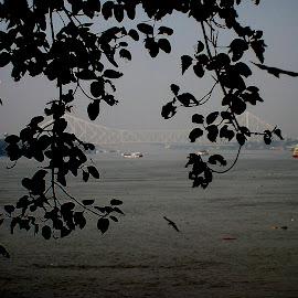 kolkata evening beauty by Taposhree Dutta - Landscapes Travel (  )
