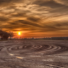 sunset traces by Egon Zitter - Landscapes Prairies, Meadows & Fields ( field, grass, sunset, agriculture, meadow, lines, curves )