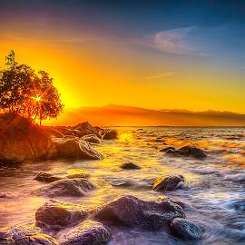 The Burning Bush by Gilbert Sanchez - Landscapes Beaches ( sunrises, sun set, sun rise, beach, sunlight, sun rays, sun, beaches, tree, bushes, sunny, sunset, sunsets, coconut tree, sunrays, sundown, trees, bush, sun light, sunshine )