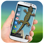 Lizard on Phone 3D Funny Joke – Scary Gecko Prank Icon