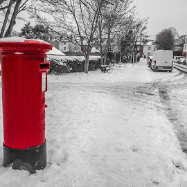 Letterbox in the snow by Wendy Richards - City,  Street & Park  Neighborhoods ( red, letterbox, street, snow, roads )