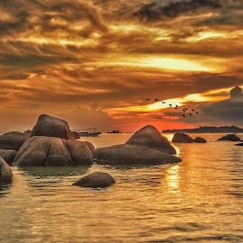 by Andy Bagus - Landscapes Waterscapes