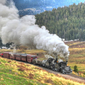 Full Steam Ahead by Nancy Tharp - Transportation Trains