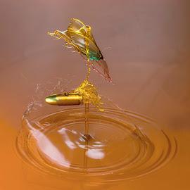 Torn by Ganjar Rahayu - Abstract Water Drops & Splashes ( abstract, water, macro, highspeed, liquid, waterdrop, collision, bullet )