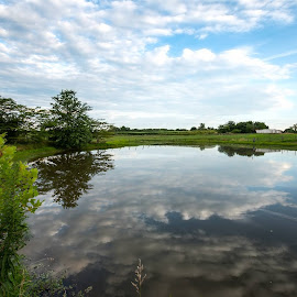 by Jody Jedlicka - Landscapes Prairies, Meadows & Fields