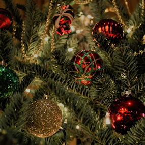 The Tree by Patti Westberry - Public Holidays Christmas ( red, tree, green, christmas, bulbs, gold,  )