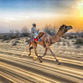 by Abdul Rehman - Instagram & Mobile iPhone (  )