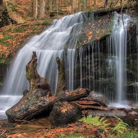 Rissloch waterfall by Radek Lauko - Landscapes Waterscapes ( water, bayerwald, bavaria, waterscape, rissloch, waterfall, forest )