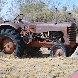Tractor by Heather Walton - Transportation Other ( equipme, machinery, rusted, tractor, farming )