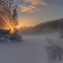 Sunburst by Rune Askeland - Landscapes Sunsets & Sunrises ( winter, ice, sunset, snow, trees, lake )