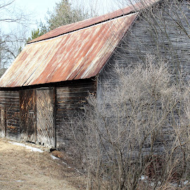 by Lenora Popa - Buildings & Architecture Decaying & Abandoned ( farm, building, barn, architecture, farming )