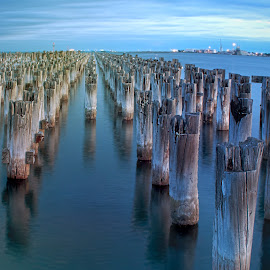 Princes Pier by Amanda Wilson - Buildings & Architecture Other Exteriors ( water, melbourne, pier, victoria, abandoned )