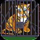 Siberian Tiger Cub Escape