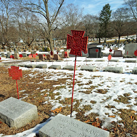 Heroes Final Rest... by Kristin Patota - City,  Street & Park  Cemeteries ( hero, pine grove, cemetery, fire fighters, grave )