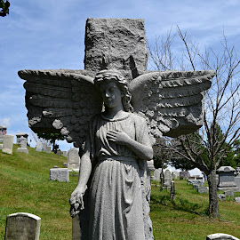 by Marie Clawson - City,  Street & Park  Cemeteries